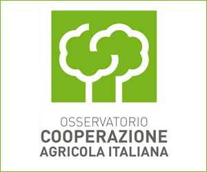 Progetto Coop start up